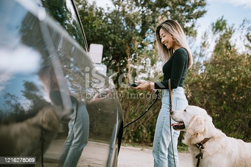 A Korean young woman charges her electric car by plugging it in at a power source parking spot.  Her Golden Retriever watches patiently.
