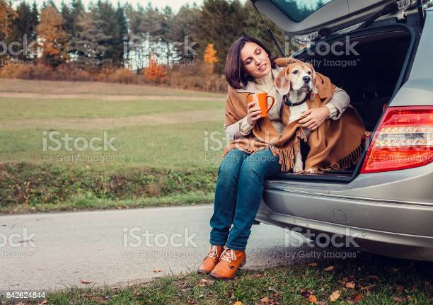 Woman with dog sit together in cat truck and warms hot tea picture id842624844?b=1&k=6&m=842624844&s=612x612&h=gvqzgsoxy4ur6xmrm5zjnxhbaznbqvno0z3bbadbggq=