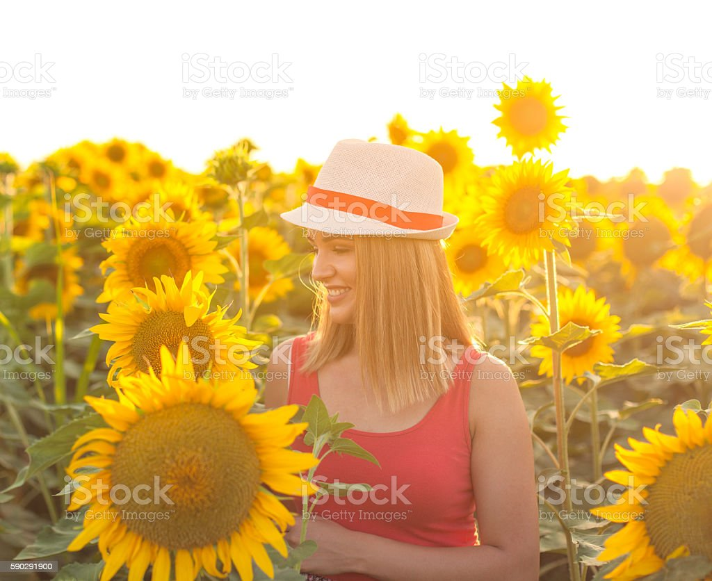 Woman With Hat in a Sunflower Field royaltyfri bildbanksbilder