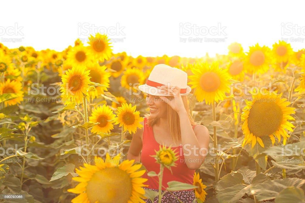 Woman With Hat in a Sunflower Field Стоковые фото Стоковая фотография