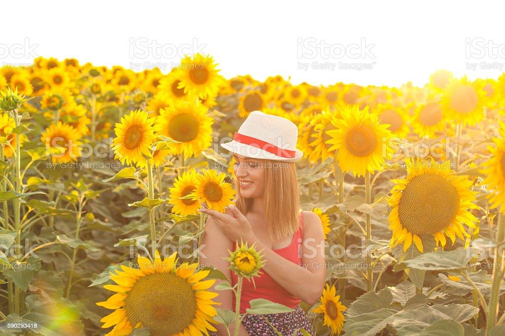 Woman With Hat in a Sunflower Field royaltyfri bildbanksbilder