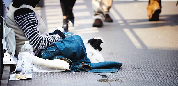 Frau mit Ihrem Hund. Color Image – Foto