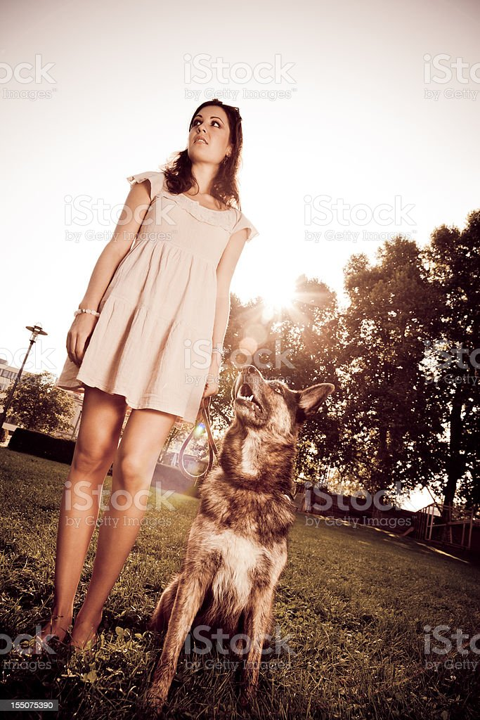 woman with her dog in the park stock photo