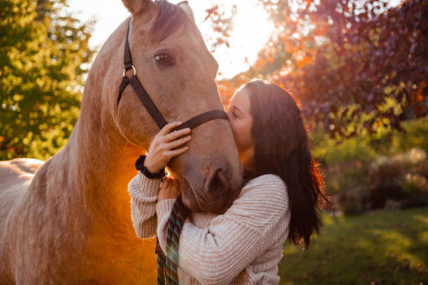 a woman with her horse at sunset, autumn outdoors scene - kiss стоковые фото и изображения