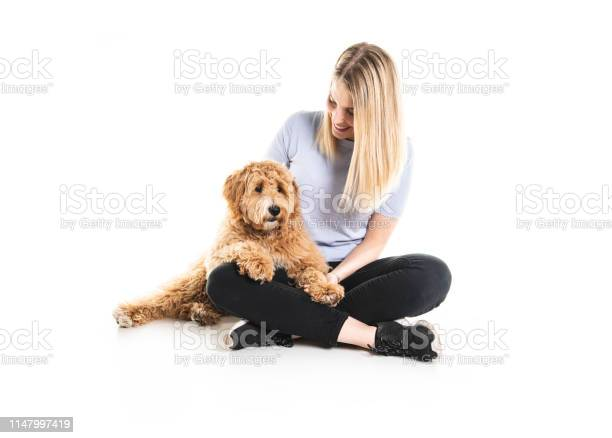 Woman with his golden labradoodle dog isolated on white background picture id1147997419?b=1&k=6&m=1147997419&s=612x612&h=gj0jrndncezxfrzbyzb778jiir0jzd d2rr ljqz6v8=