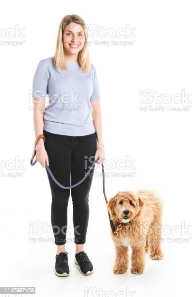 Woman with his golden labradoodle dog isolated on white background picture id1147997478?b=1&k=6&m=1147997478&s=612x612&h=rmbme2n0tx0hxw37qxsy5 m3dvtfr0zozig0abnib3e=