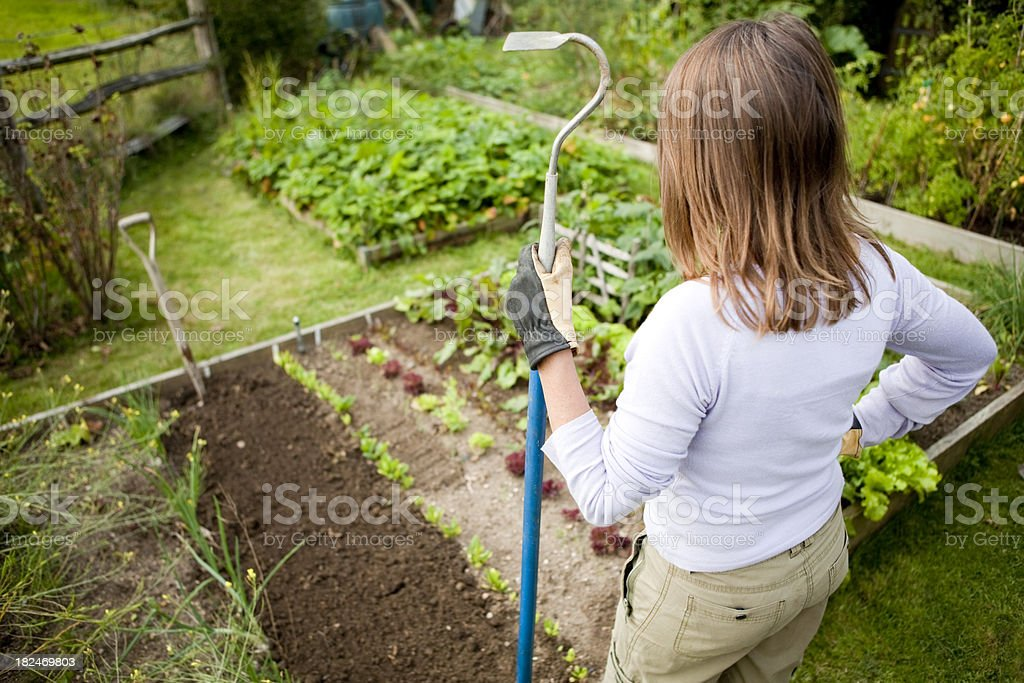 Woman With Hoe in Vegetable Garden royalty-free stock photo