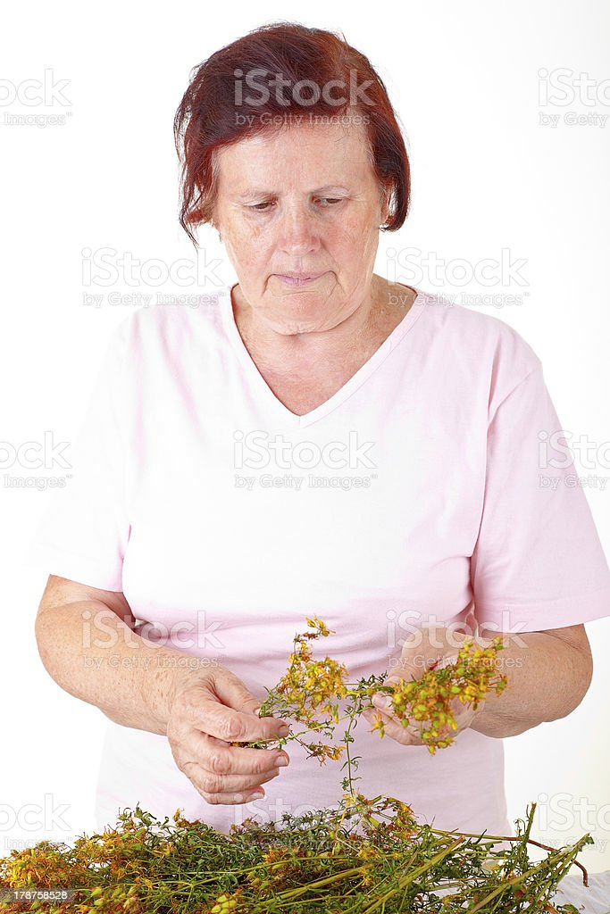 woman with hypericum royalty-free stock photo