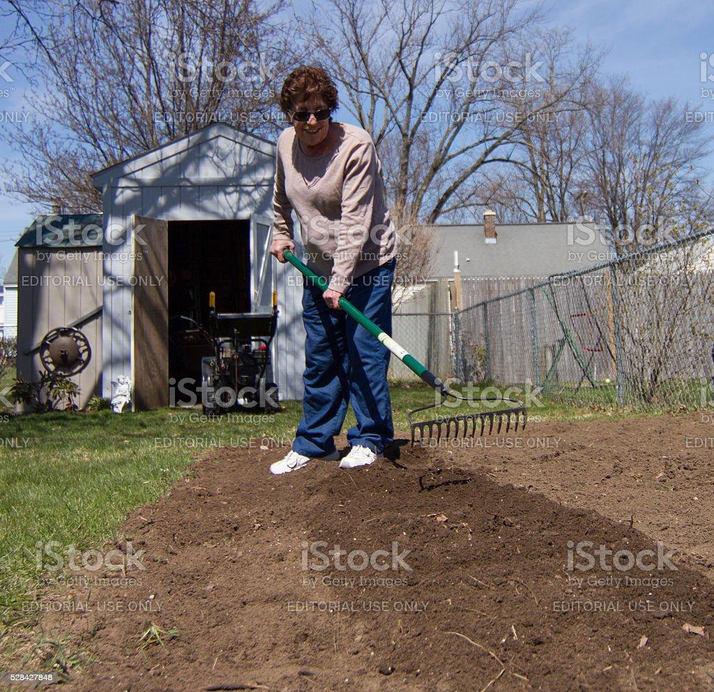 Woman with iron rake preparing garden stock photo