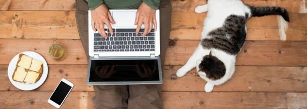 Woman with laptop and cat picture id643663452?b=1&k=6&m=643663452&s=612x612&w=0&h=fipbegqk h89cvpgp022kss0x0qiiawmwv92u3hnnb4=