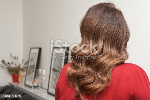 istock Woman with long dark hair and wave hairstyle 1133182675