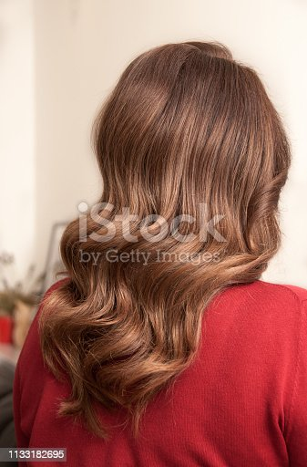 istock Woman with long dark hair and wave hairstyle 1133182695