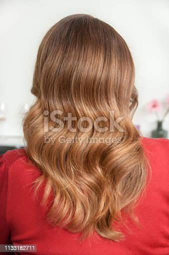 istock Woman with long dark hair and wave hairstyle 1133182711