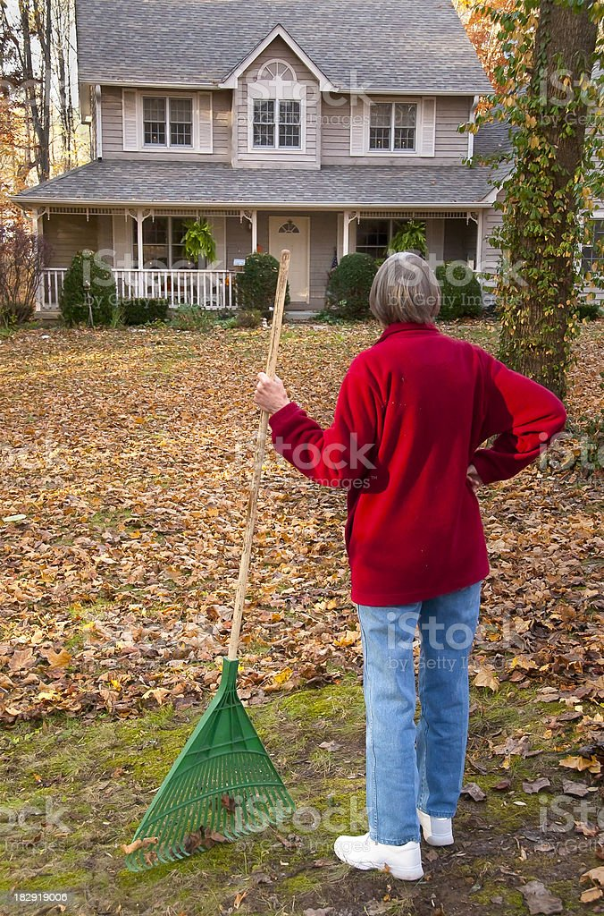 Woman with LOTS of leaves to rake. royalty-free stock photo