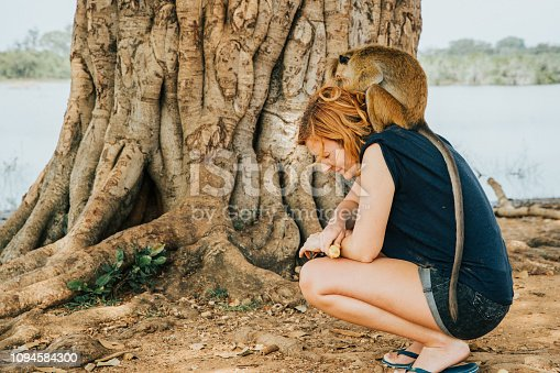 View of a female tourist with a monkey sitting on her back, Sri Lanka