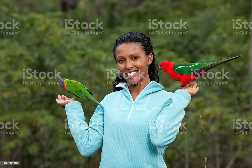 Woman with parrots. stock photo