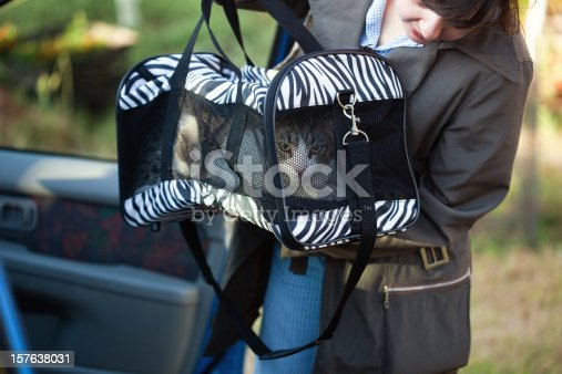 istock Woman with pet carrier 157638031