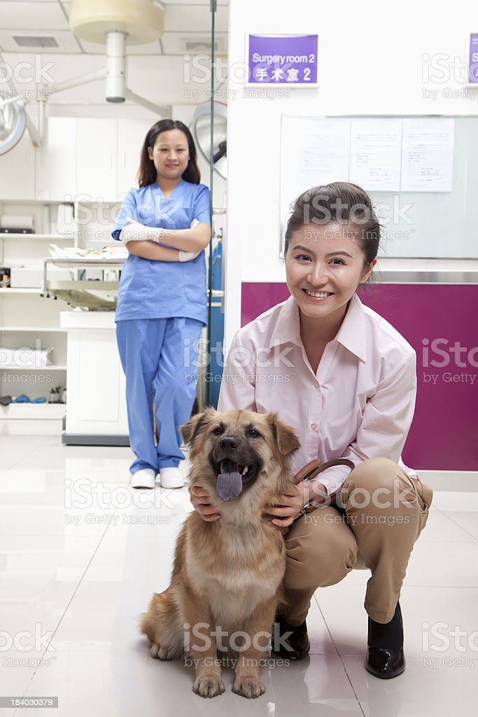 Woman with pet dog in veterinarian's office royalty-free stock photo