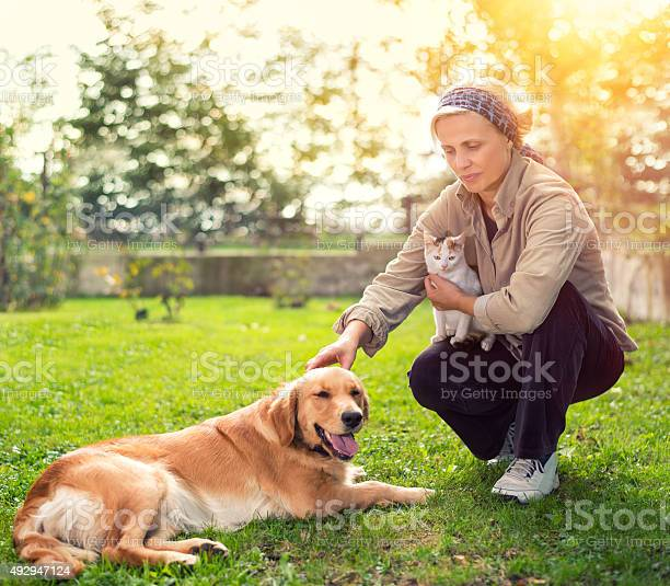 Woman with pets resting outdoor picture id492947124?b=1&k=6&m=492947124&s=612x612&h=sfzmqlvhyb8eiuqn201zfjaofwwly7yeu7yjuhvvgkk=