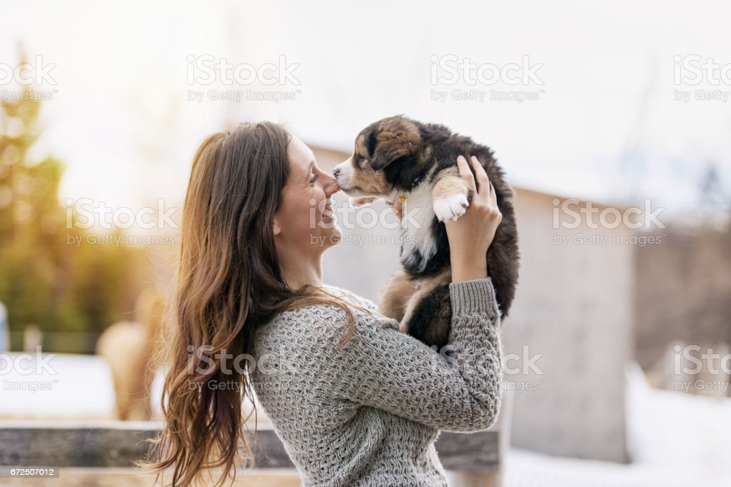 Woman with puppies stock photo