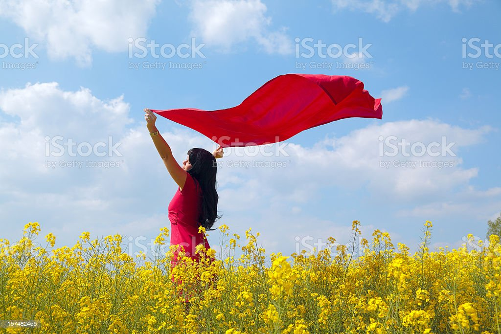 Woman with red dress and scarf in canola field (XXXL) stock photo