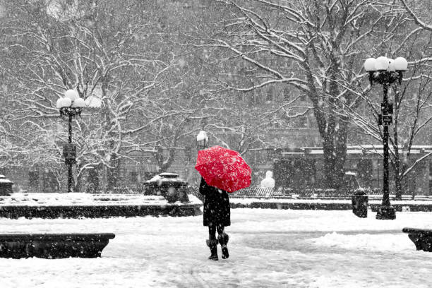 Woman with red umbrella in black and white snowstorm, New York City Woman with red umbrella walking through black and white landscape during noreaster snow storm in Washington Square Park, New York City blizzard stock pictures, royalty-free photos & images