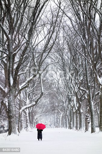 woman with red umbrella in snowy central park