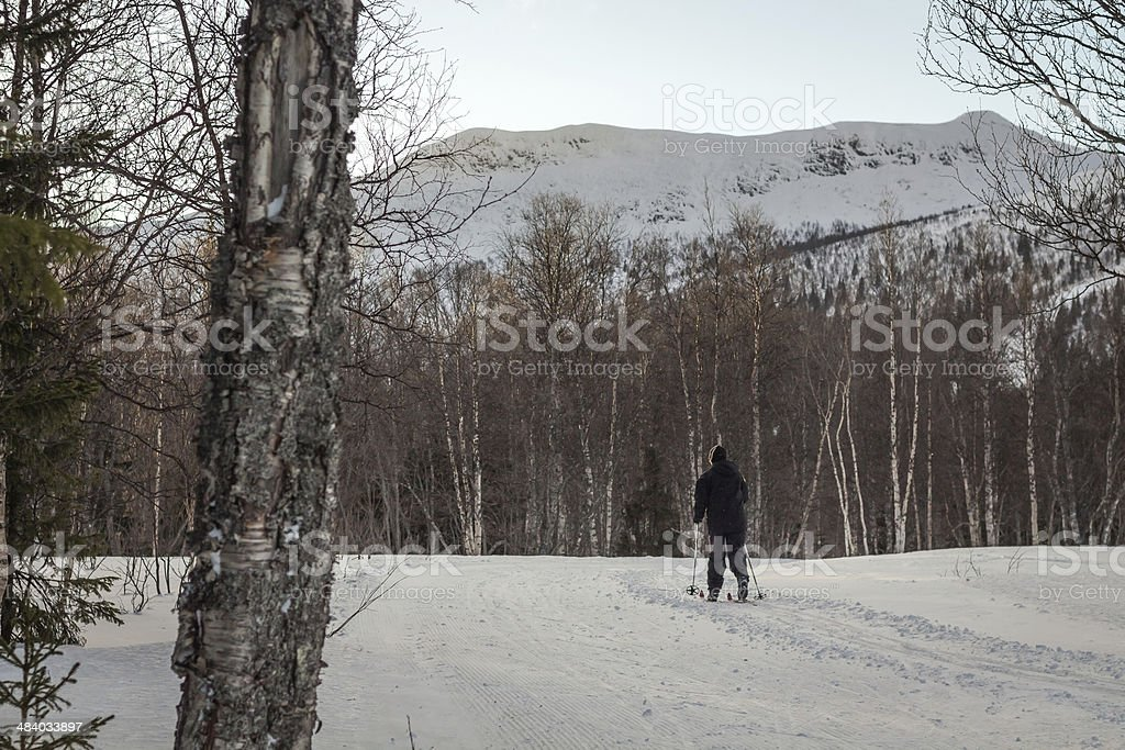 woman with skis in the distant royalty-free stock photo