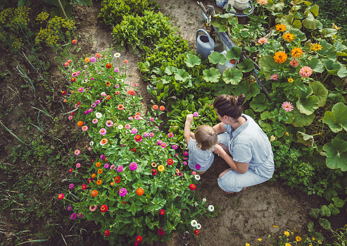 Woman With Son in a Home Grown Garden