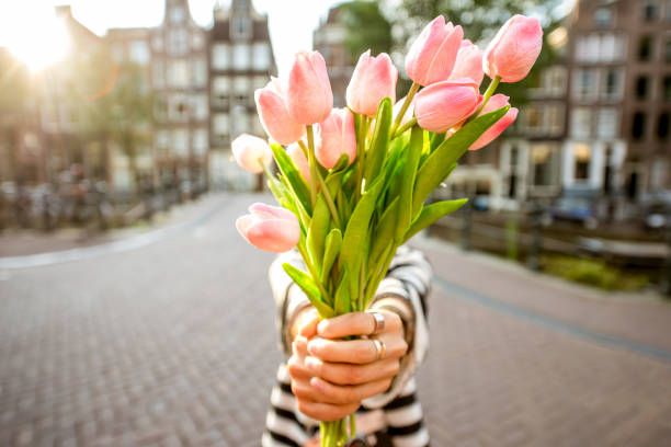 Woman with tulips in Amsterdam city stock photo