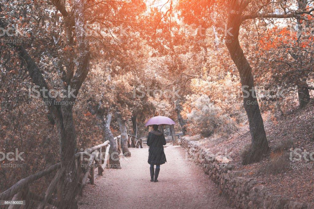 Woman with umbrella enjoy autumn rain royalty-free stock photo
