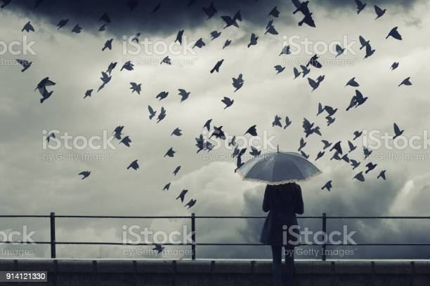 Photo of Woman with umbrella watching birds fly