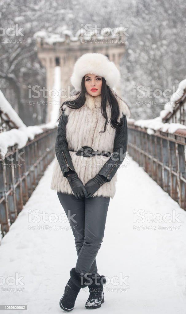 Frau mit weißen Pelzmütze und genießen Sie die Winterlandschaft in der Nähe ein Eisenzaun Weste. Attraktive langes Haar Brünette Mädchen posiert in Winterlandschaft. Schöne Frau mit roten Lippen in hellen kalten Tag – Foto