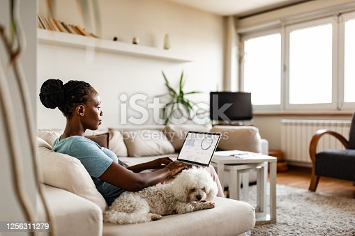 African-American woman working at home due to pandemic isolation. Belgrade, Serbia