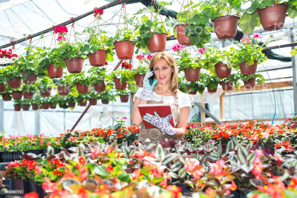 Woman working at plant nursery foto de stock royalty-free