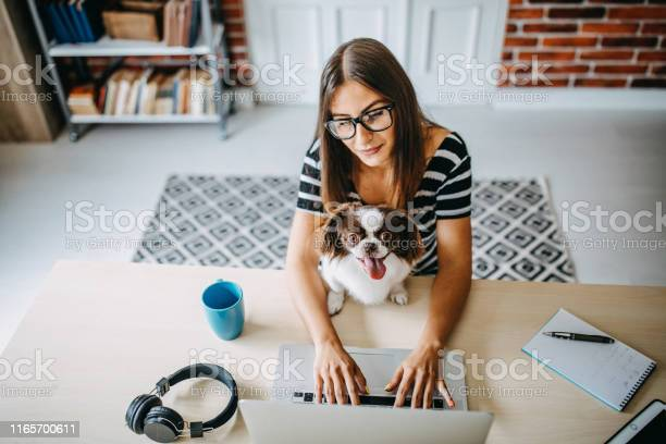 Woman working from home picture id1165700611?b=1&k=6&m=1165700611&s=612x612&h=ly6g61z5blrfgmksprer6mp nznuam17wjxpc7mng 4=
