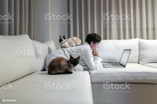 Woman working from home with cats picture id882906346?b=1&k=6&m=882906346&s=612x612&h=xu7w9beb4sm 91ht7ceitpnmc duwfnmyhsgjo8xcig=