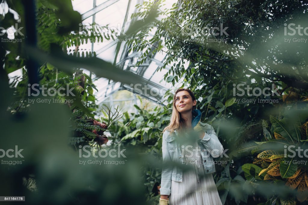 Woman working in a garden center stock photo