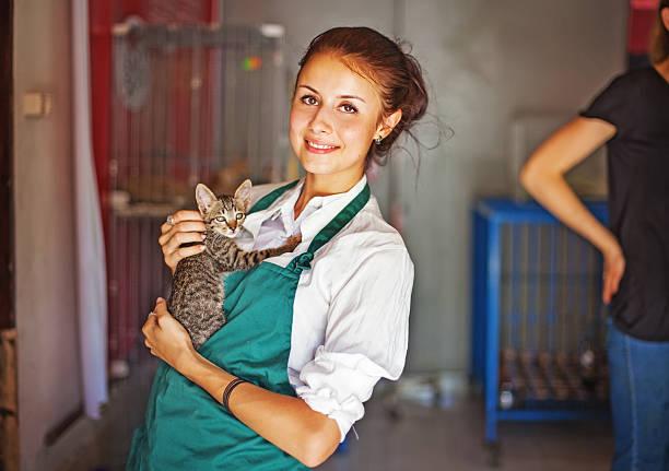 Woman working in cats shelter picture id508423211?b=1&k=6&m=508423211&s=612x612&w=0&h=phfuruikwvl4u2pqjjjybakqp gzas el2tz3e0dgqe=