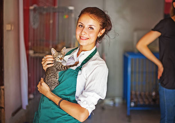 Frau arbeitet im cats shelter – Foto