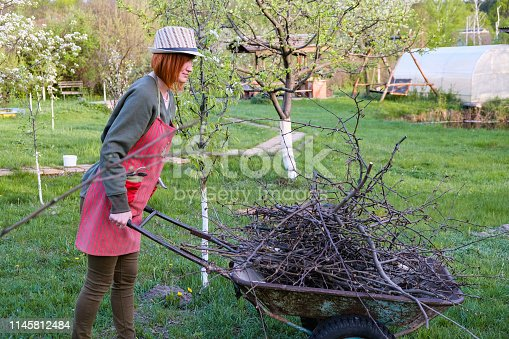 istock Woman working in garden in early spring 1145812484