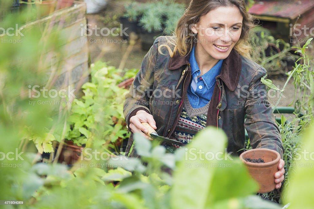 Woman working in small urban garden. stock photo