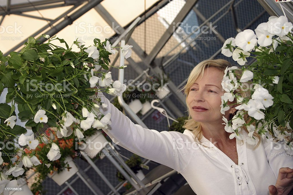 Woman working with plants royalty-free stock photo