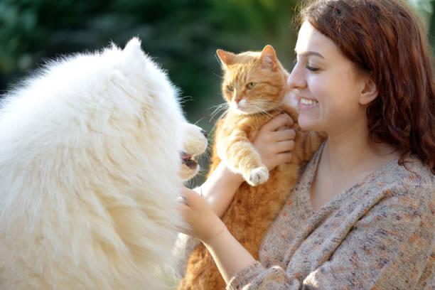 Womandog and cat picture id1145647657?b=1&k=6&m=1145647657&s=612x612&w=0&h=t3zbp8dxprkvfnaqoms cyzd2gdsmxk6pnm38vygrpa=