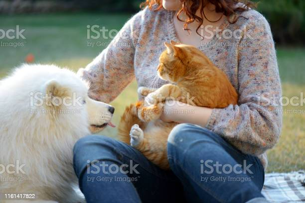 Womandog and cat picture id1161417822?b=1&k=6&m=1161417822&s=612x612&h=rgbu5vqoekql lgnigynglrimkdhugx7ydiunauehde=