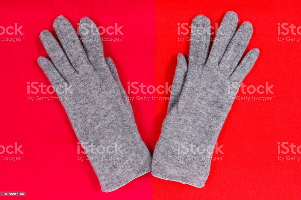 Womanly gloves and shawl as clothes for autumn or winter, warm apparel concept