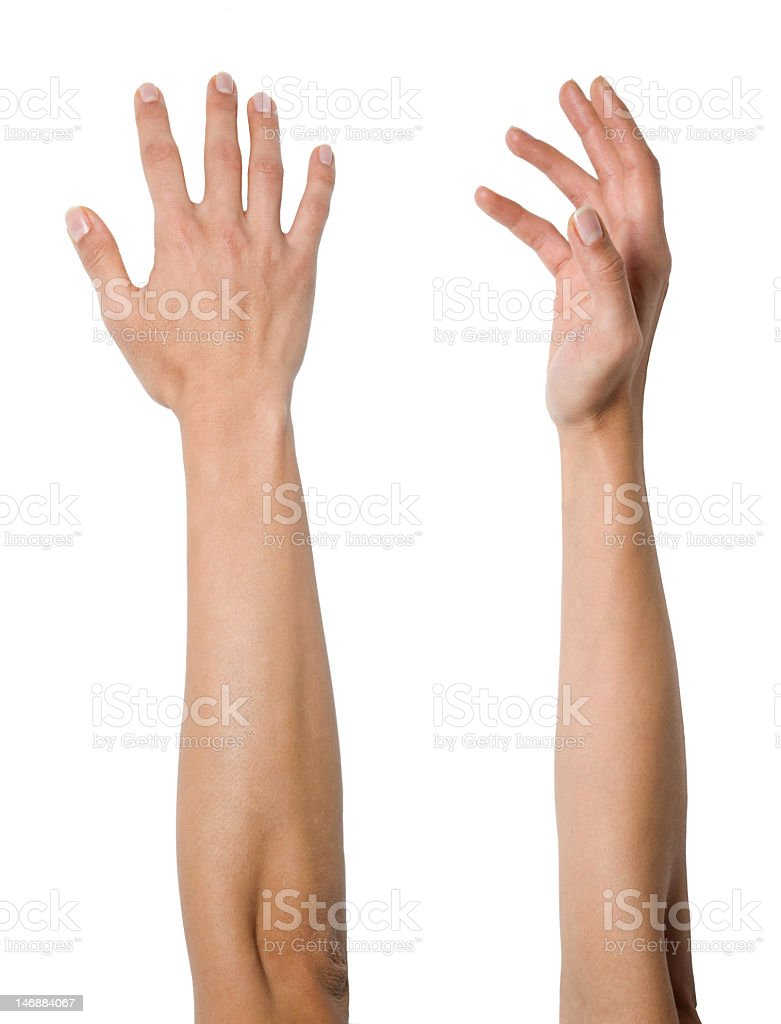 Woman's arms and hands stock photo
