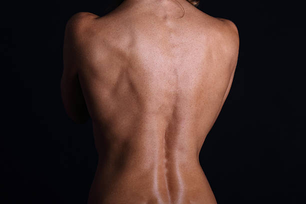 Womans back stock photo