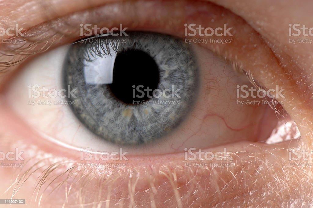 Woman's Blue Eye Close Up royalty-free stock photo