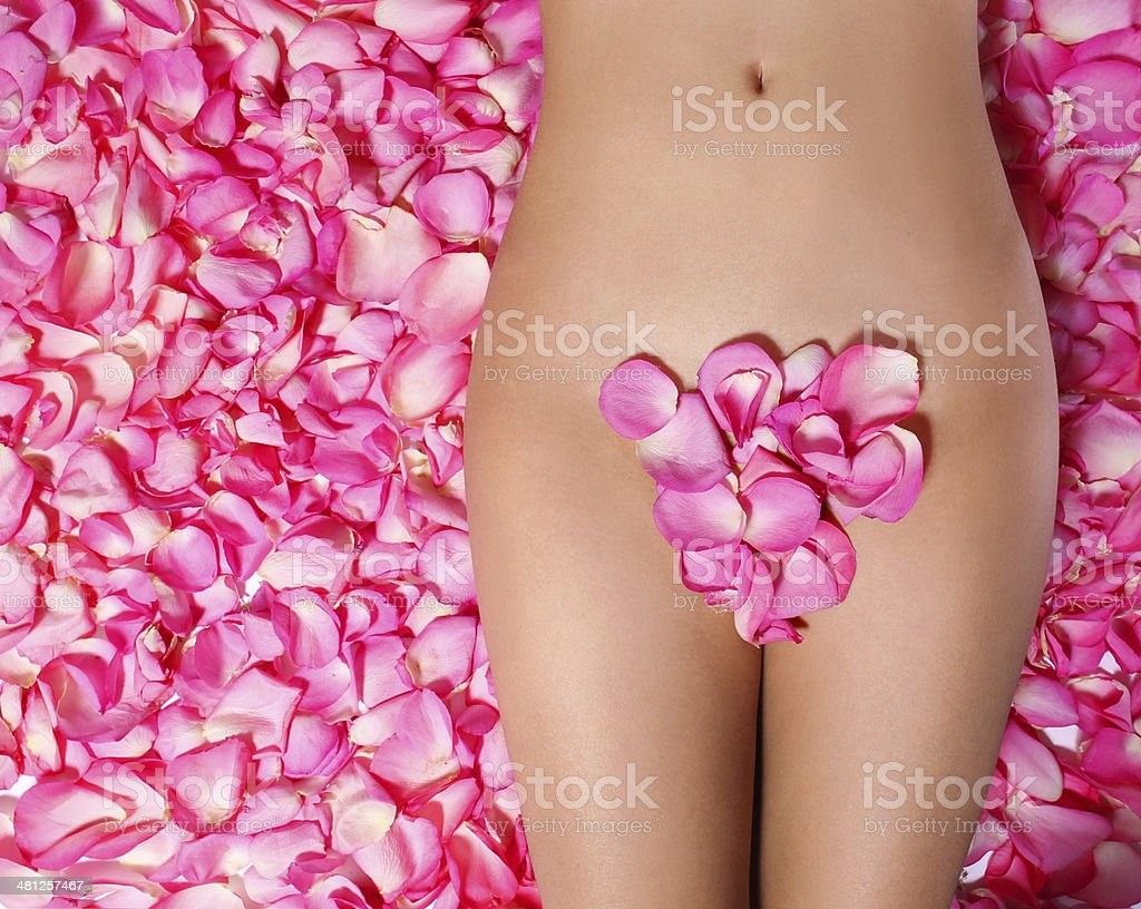 Woman's body with pink rose petals stock photo